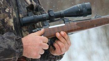 Выбор карабина для охоты