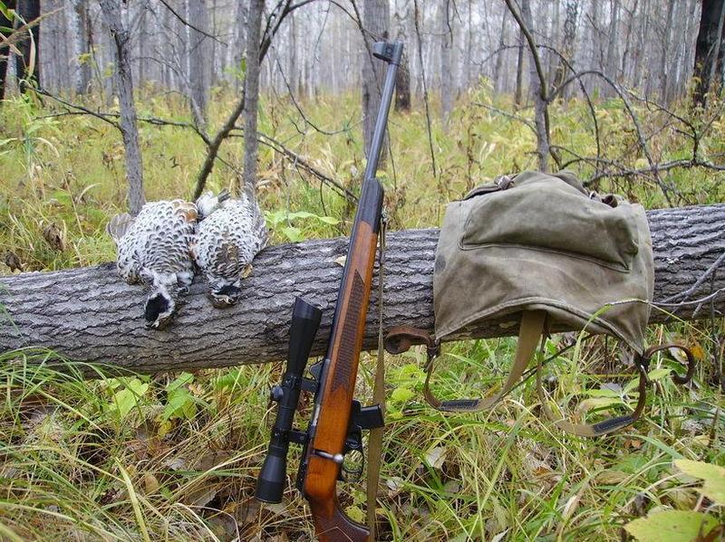 Мелкашка для охоты