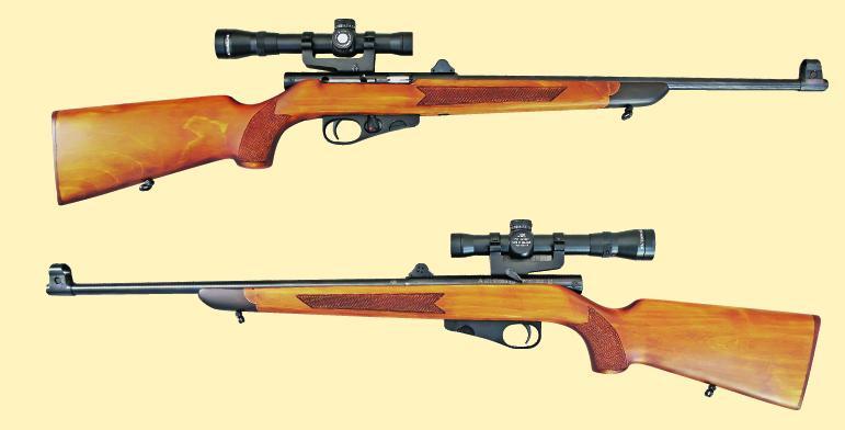 Полуавтоматическая мелкокалиберная винтовка
