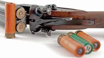 20 калибр на охоте