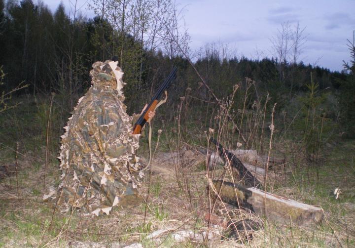 Подготовка к стрельбе по вальдшнепу
