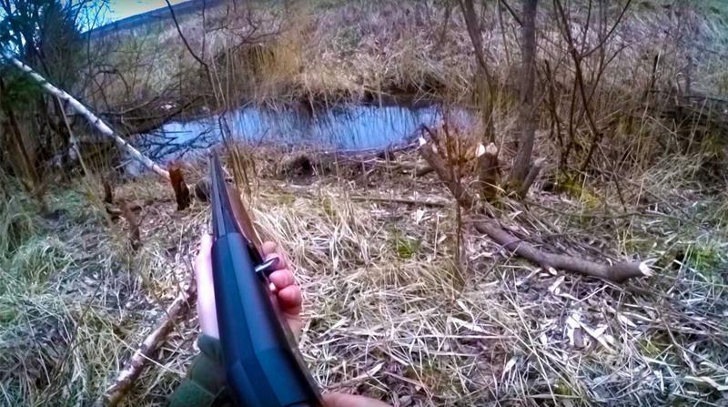 Ожидание с ружьём у водоёма