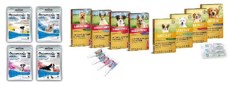 Средства для обработки собаки